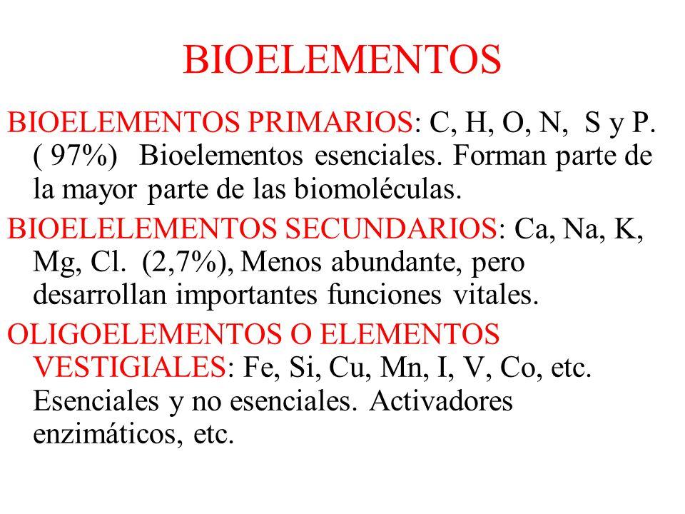 BIOELEMENTOS BIOELEMENTOS PRIMARIOS: C, H, O, N, S y P. ( 97%) Bioelementos esenciales. Forman parte de la mayor parte de las biomoléculas.