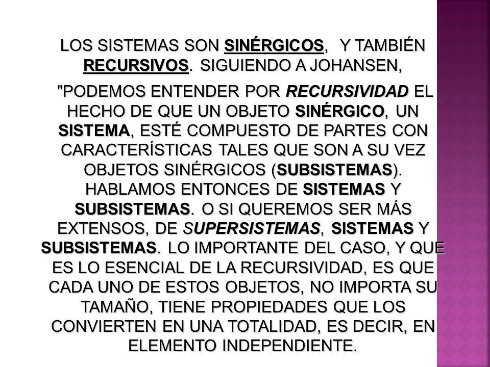 LOS SISTEMAS SON SINÉRGICOS, Y TAMBIÉN RECURSIVOS