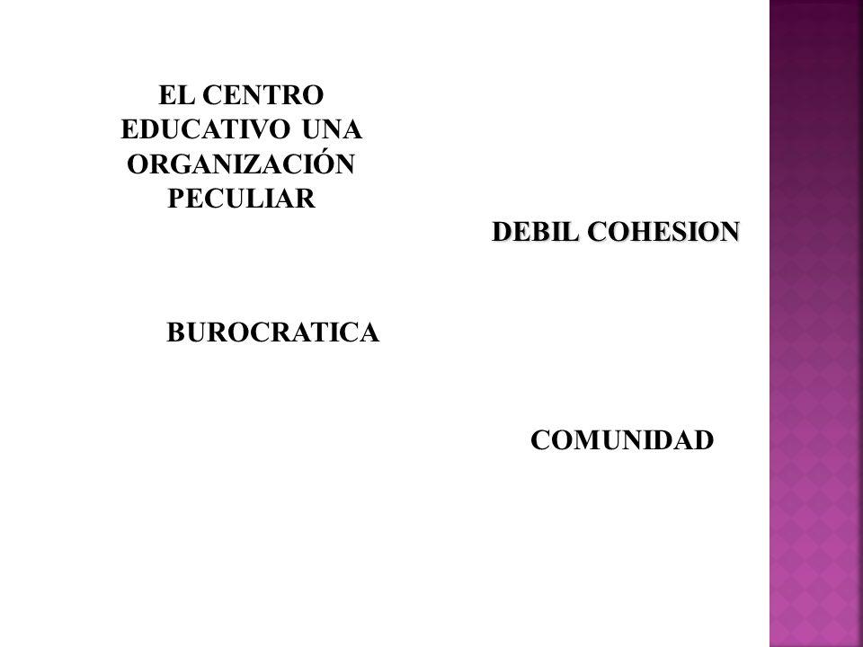 EL CENTRO EDUCATIVO UNA ORGANIZACIÓN PECULIAR
