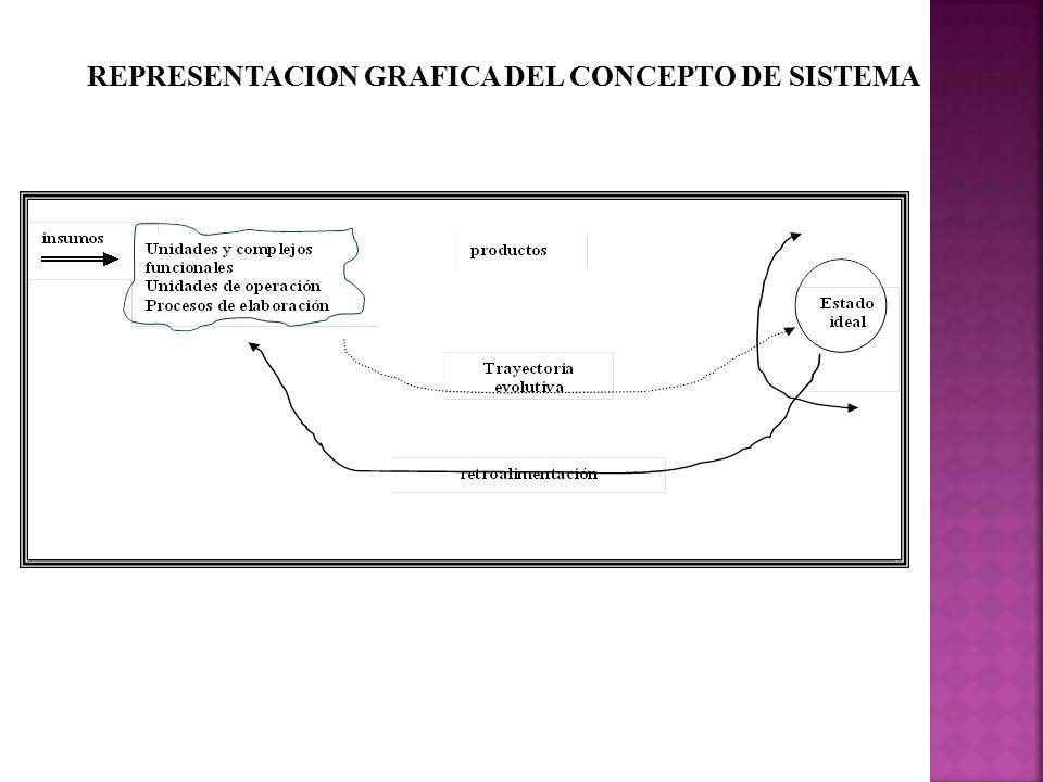 REPRESENTACION GRAFICA DEL CONCEPTO DE SISTEMA