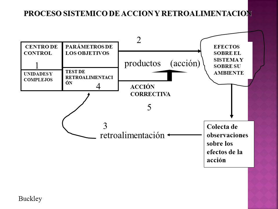 PROCESO SISTEMICO DE ACCION Y RETROALIMENTACION