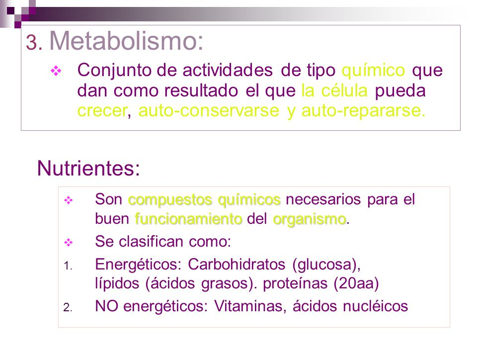 3. Metabolismo: Nutrientes: