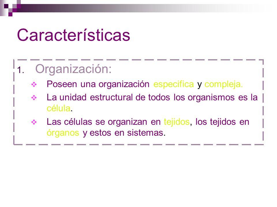 Características Organización: