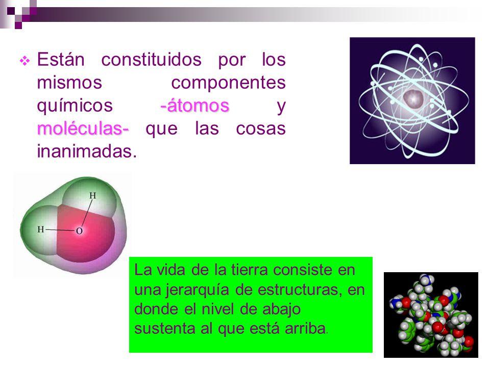 Están constituidos por los mismos componentes químicos -átomos y moléculas- que las cosas inanimadas.