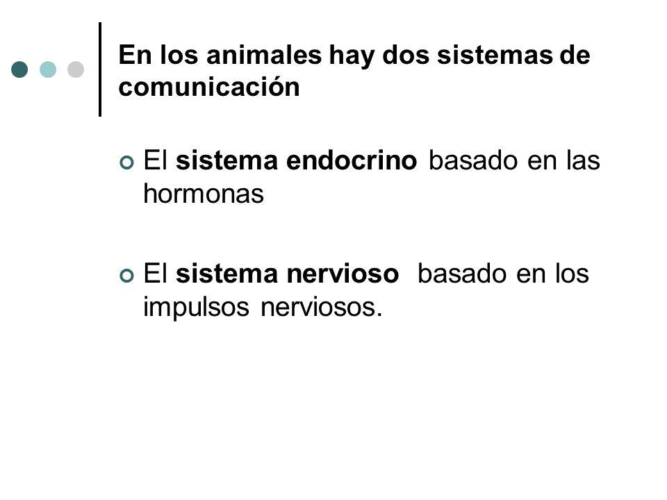 En los animales hay dos sistemas de comunicación