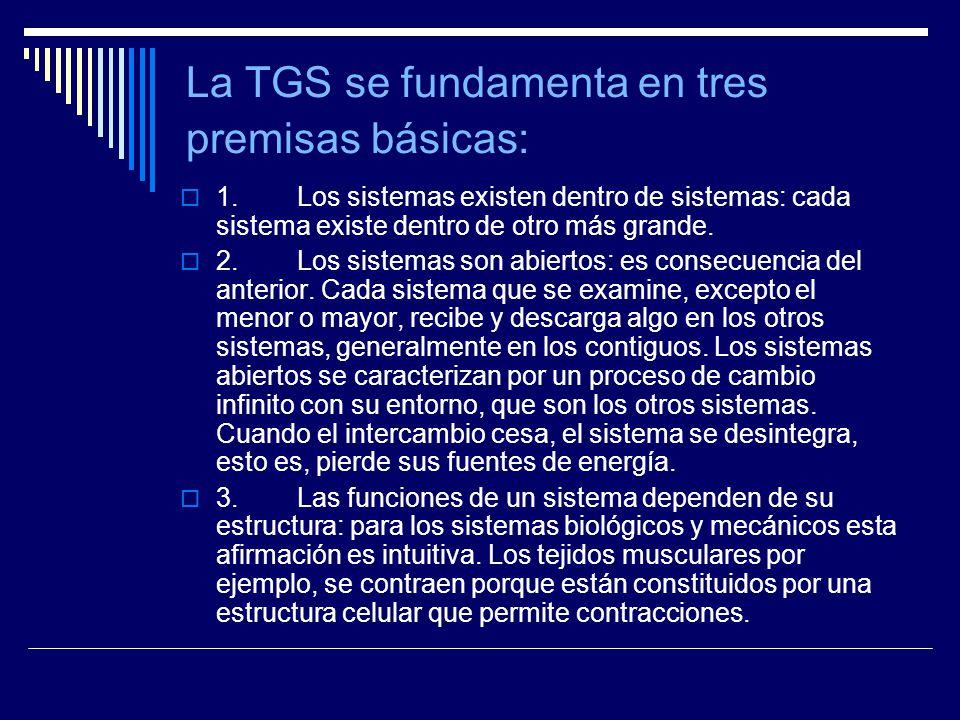 La TGS se fundamenta en tres premisas básicas: