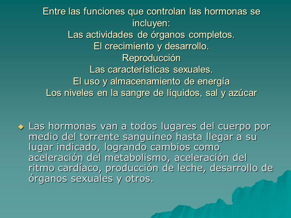 Entre las funciones que controlan las hormonas se incluyen: Las actividades de órganos completos. El crecimiento y desarrollo. Reproducción Las características sexuales. El uso y almacenamiento de energía Los niveles en la sangre de líquidos, sal y azúcar
