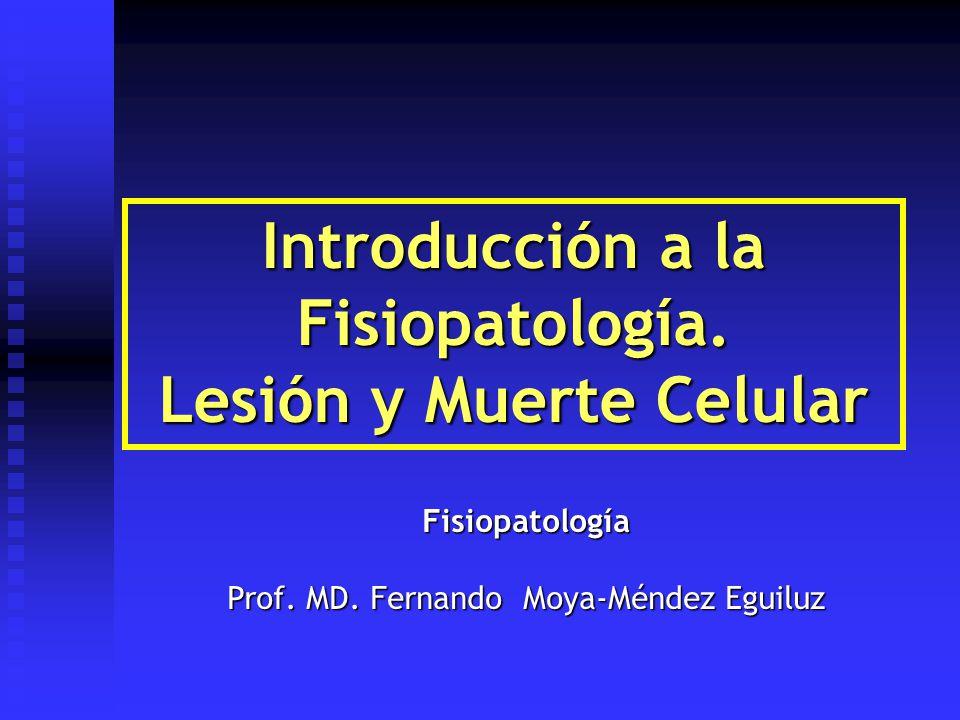 Introducción a la Fisiopatología. Lesión y Muerte Celular