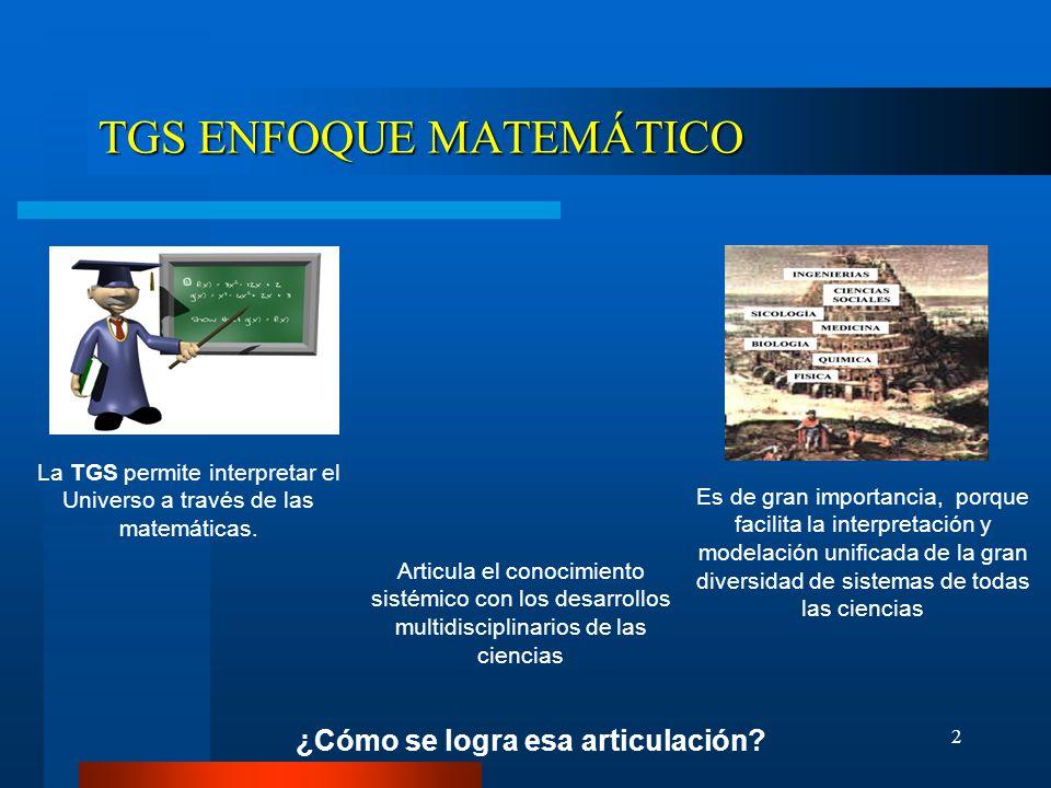 TGS ENFOQUE MATEMÁTICO