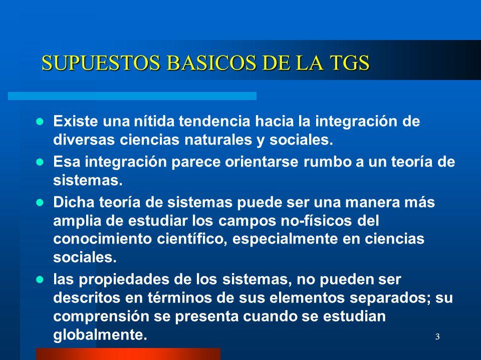 SUPUESTOS BASICOS DE LA TGS