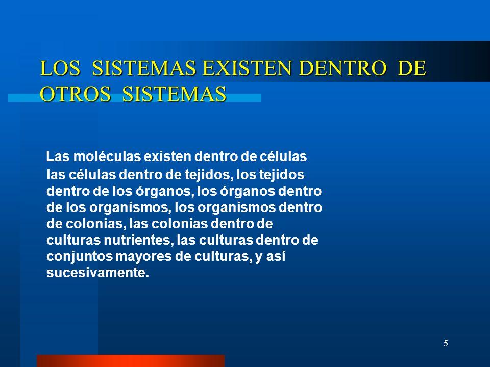 LOS SISTEMAS EXISTEN DENTRO DE OTROS SISTEMAS
