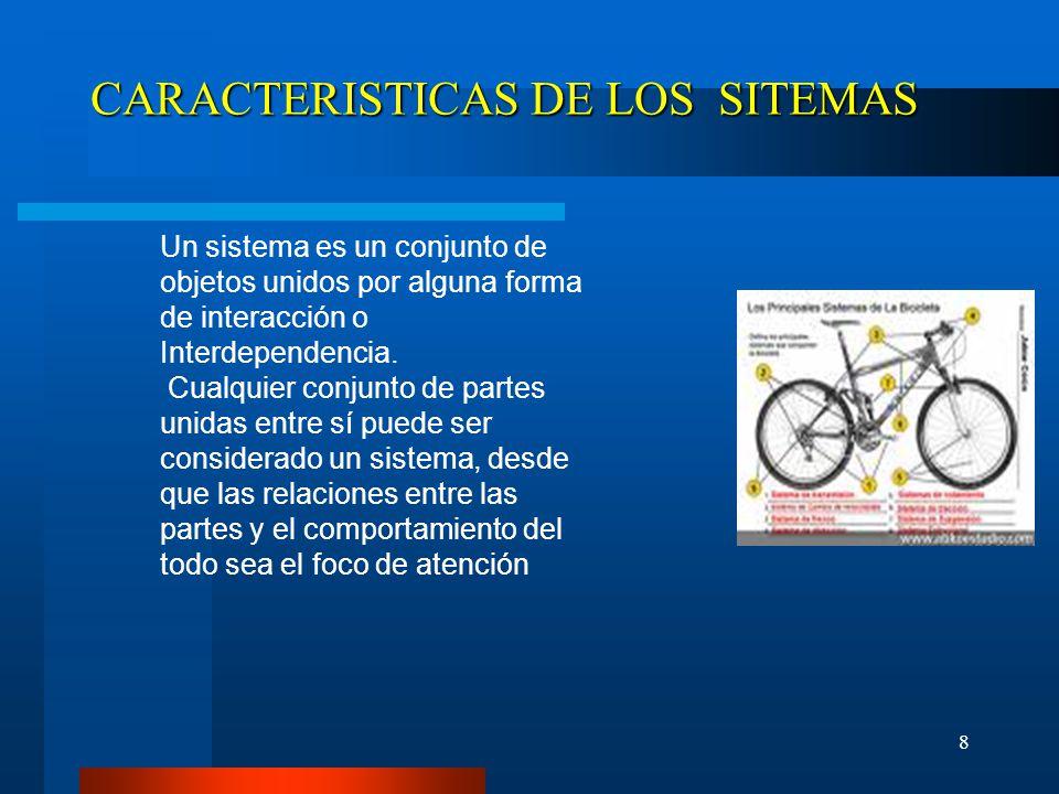 CARACTERISTICAS DE LOS SITEMAS