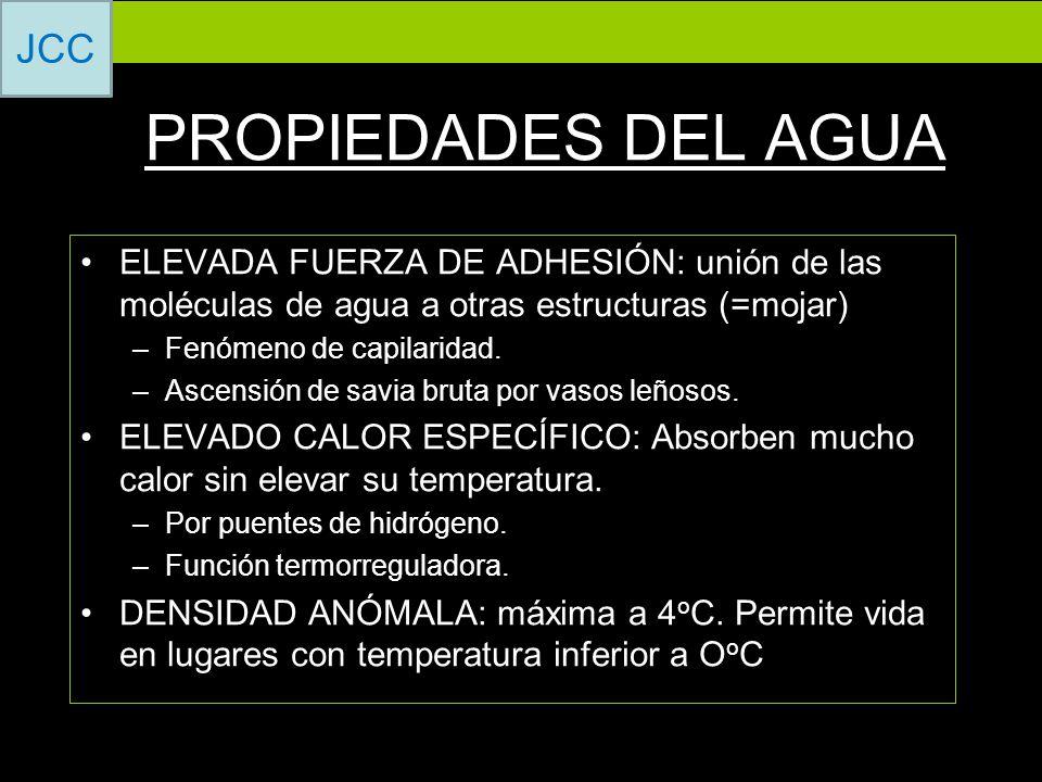 PROPIEDADES DEL AGUA ELEVADA FUERZA DE ADHESIÓN: unión de las moléculas de agua a otras estructuras (=mojar)