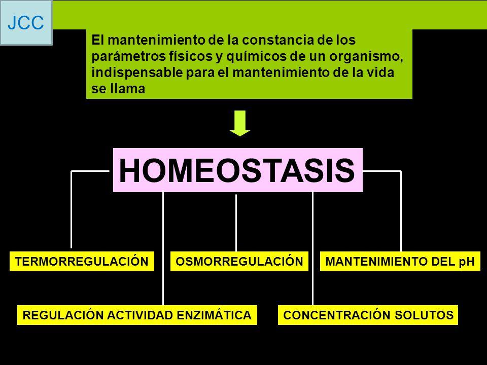 El mantenimiento de la constancia de los parámetros físicos y químicos de un organismo, indispensable para el mantenimiento de la vida se llama