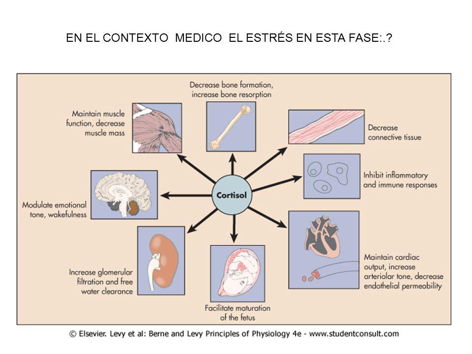 EN EL CONTEXTO MEDICO EL ESTRÉS EN ESTA FASE:.