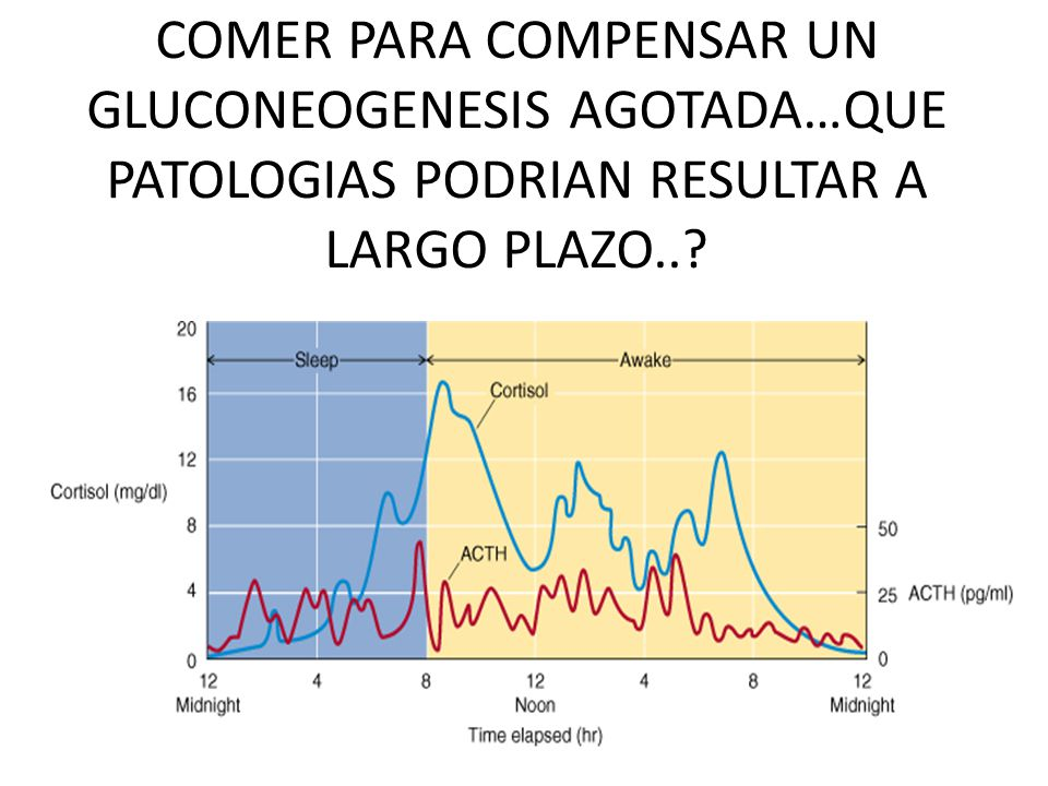 COMER PARA COMPENSAR UN GLUCONEOGENESIS AGOTADA…QUE PATOLOGIAS PODRIAN RESULTAR A LARGO PLAZO..