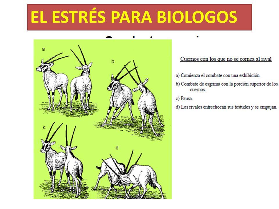 EL ESTRÉS PARA BIOLOGOS
