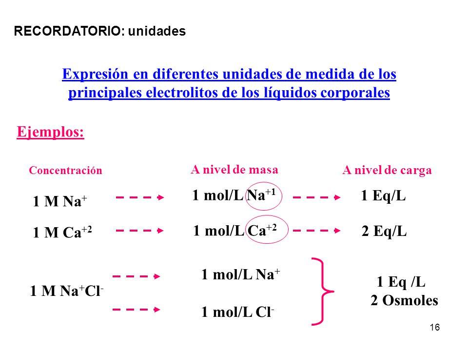 Expresión en diferentes unidades de medida de los
