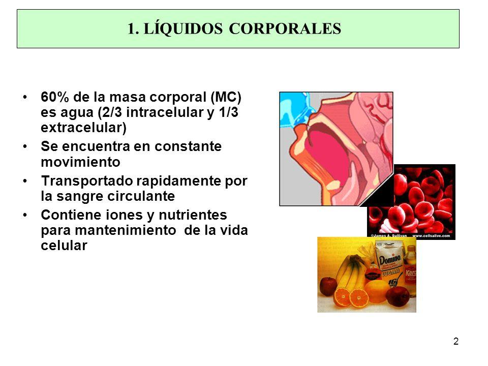1. LÍQUIDOS CORPORALES 60% de la masa corporal (MC) es agua (2/3 intracelular y 1/3 extracelular) Se encuentra en constante movimiento.