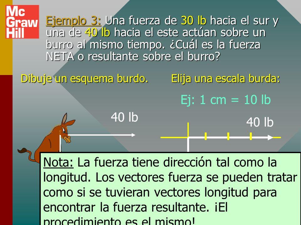 Ejemplo 3: Una fuerza de 30 lb hacia el sur y una de 40 lb hacia el este actúan sobre un burro al mismo tiempo. ¿Cuál es la fuerza NETA o resultante sobre el burro