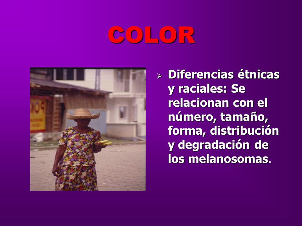 COLOR Diferencias étnicas y raciales: Se relacionan con el número, tamaño, forma, distribución y degradación de los melanosomas.