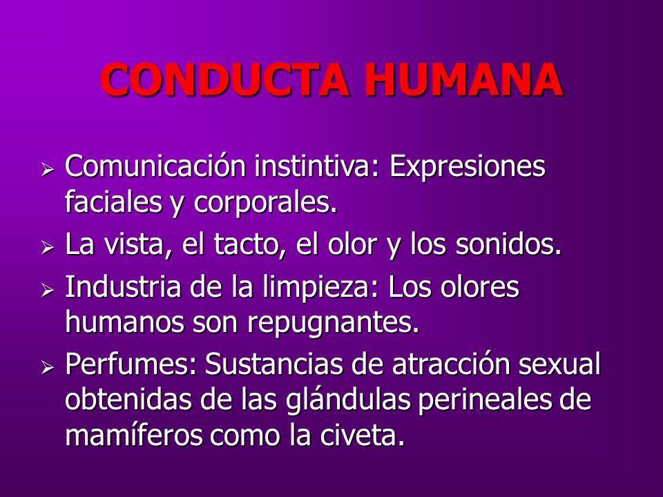 CONDUCTA HUMANA Comunicación instintiva: Expresiones faciales y corporales. La vista, el tacto, el olor y los sonidos.