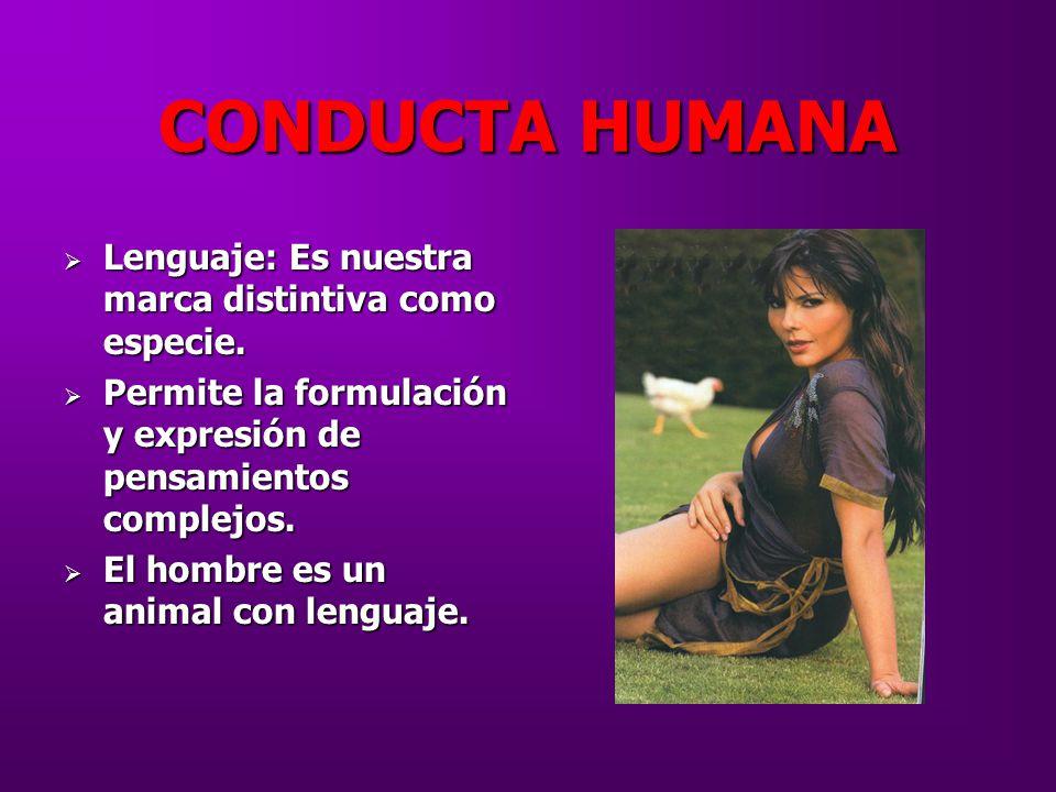 CONDUCTA HUMANA Lenguaje: Es nuestra marca distintiva como especie.