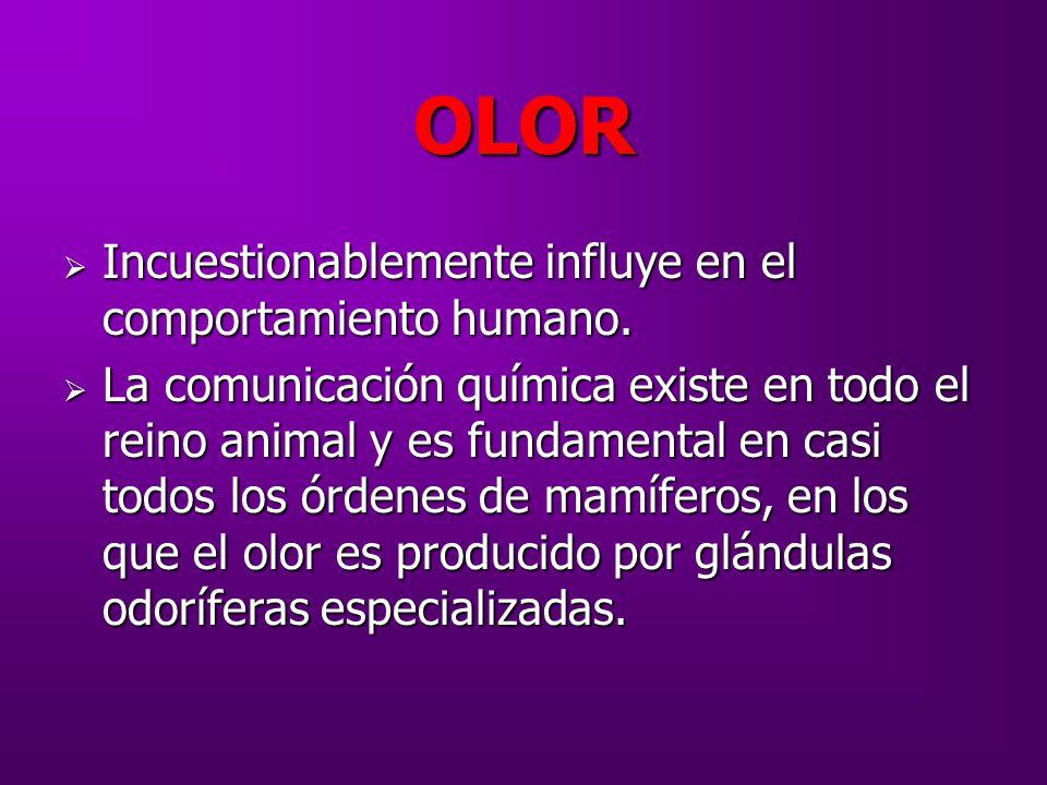 OLOR Incuestionablemente influye en el comportamiento humano.