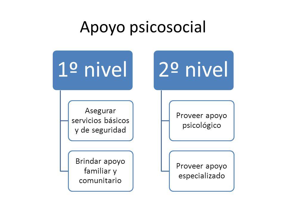 Apoyo psicosocial 1º nivel Asegurar servicios básicos y de seguridad
