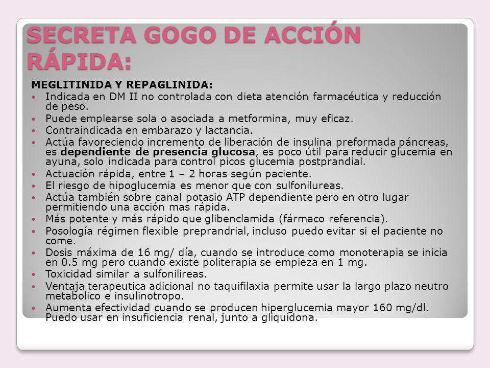 SECRETA GOGO DE ACCIÓN RÁPIDA: