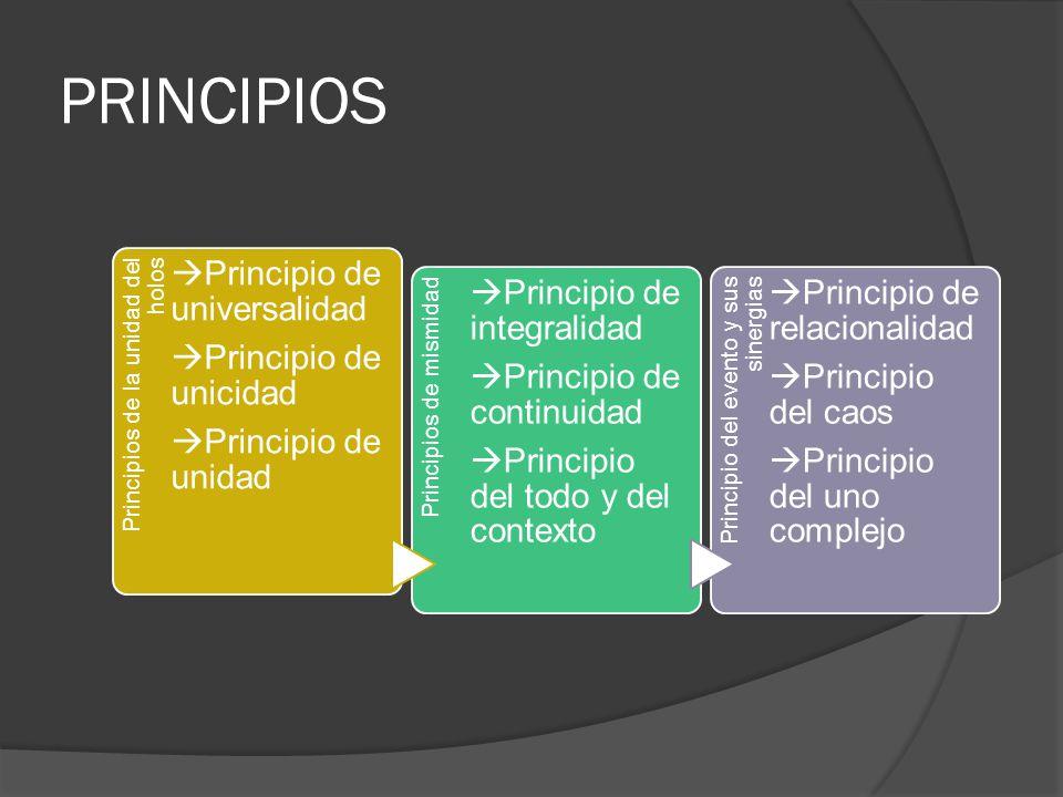 PRINCIPIOS Principios de la unidad del holos Principio de unidad