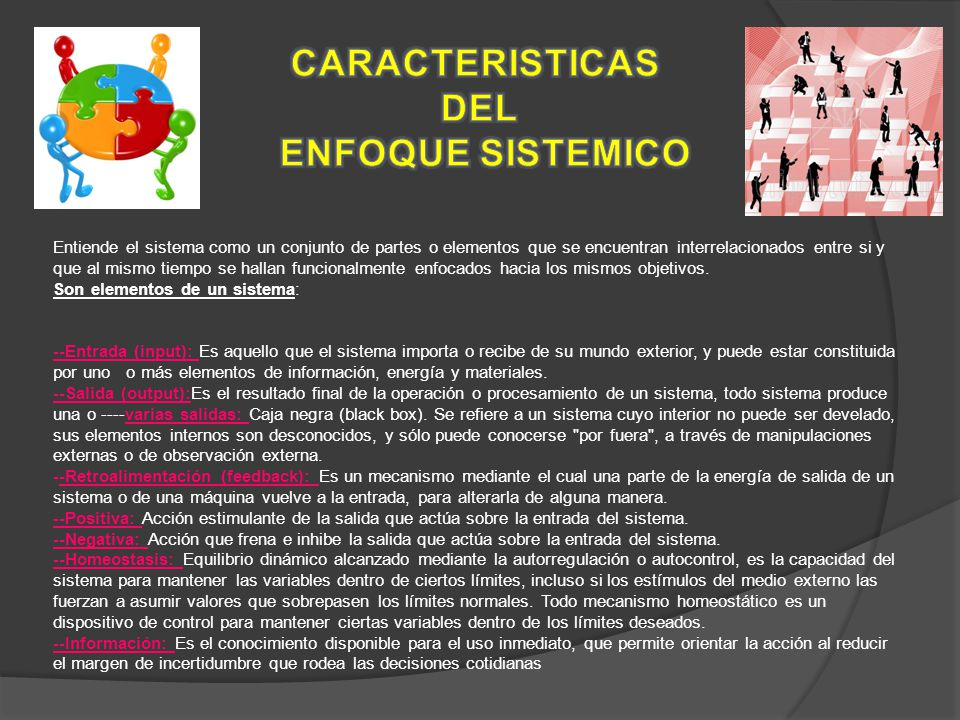 CARACTERISTICAS DEL ENFOQUE SISTEMICO