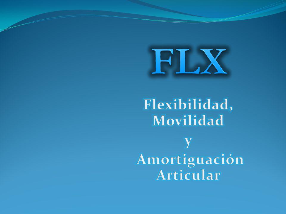 Flexibilidad, Movilidad y Amortiguación Articular