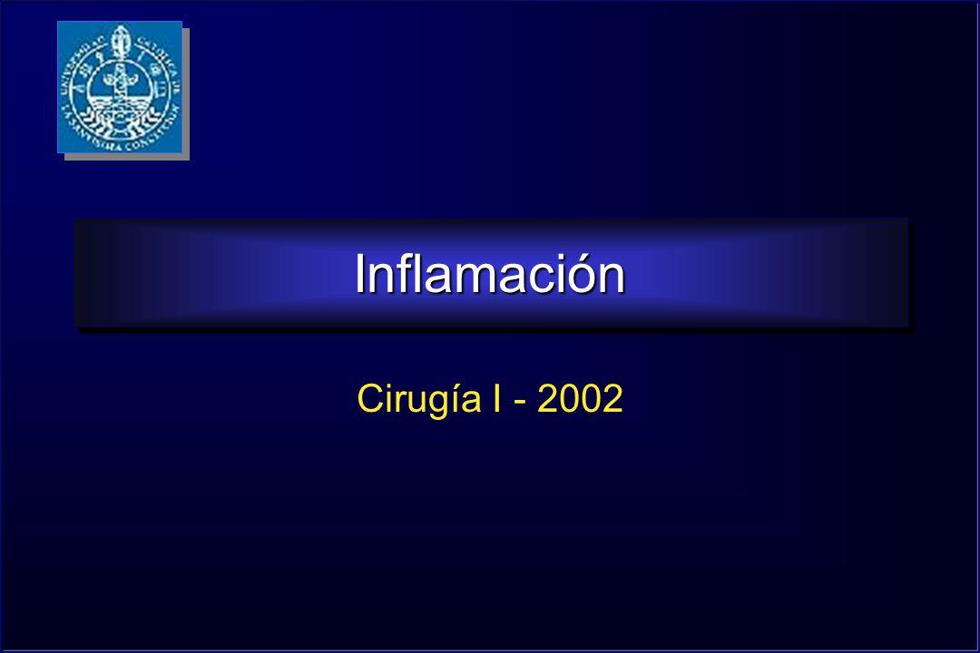 Inflamación Cirugía I - 2002
