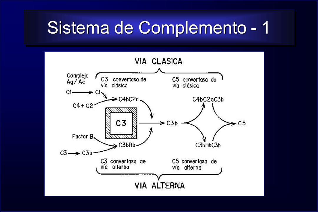 Sistema de Complemento - 1