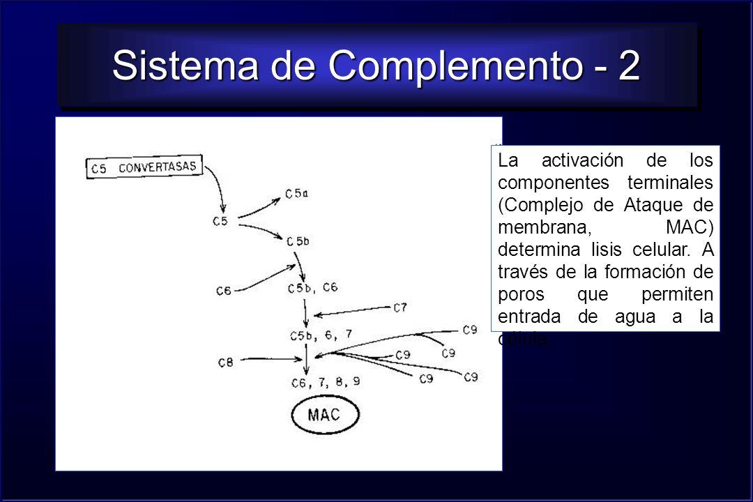 Sistema de Complemento - 2