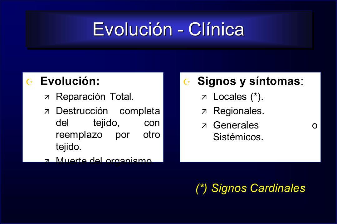Evolución - Clínica Evolución: Signos y síntomas: