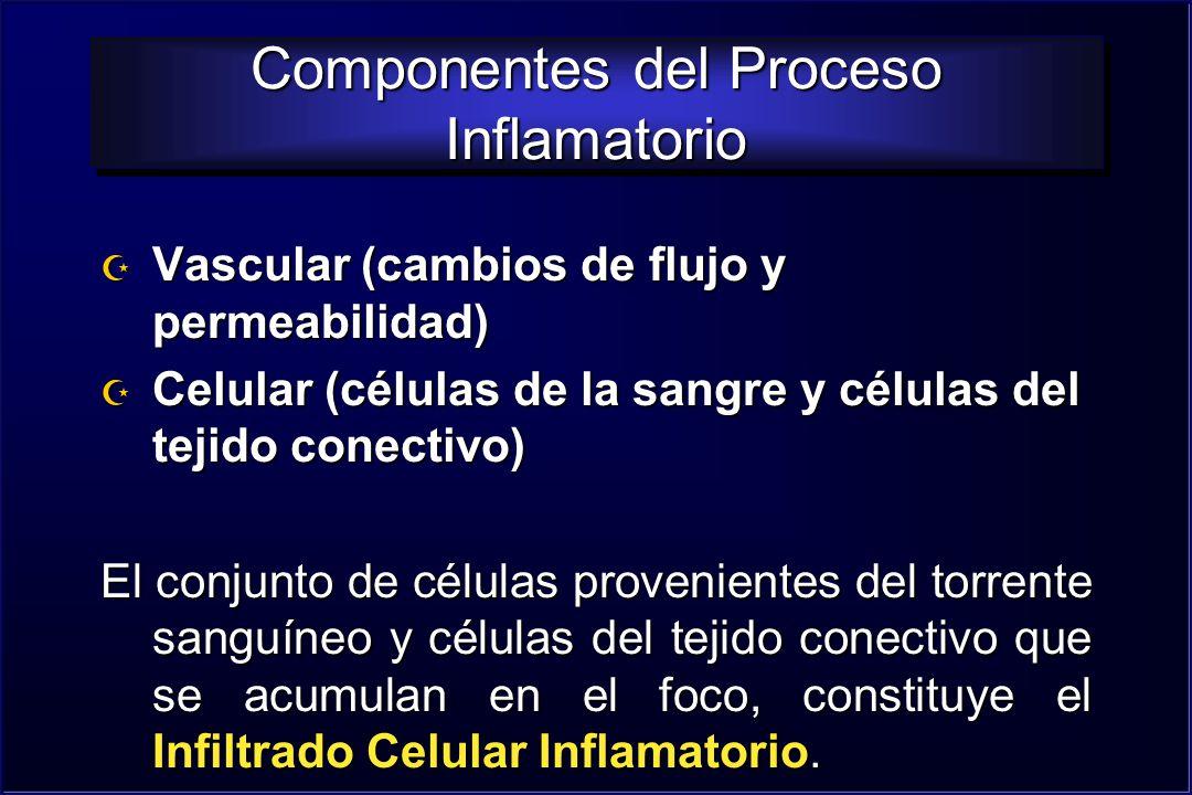 Componentes del Proceso Inflamatorio