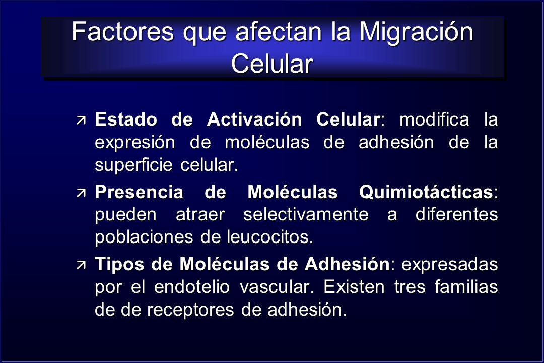Factores que afectan la Migración Celular