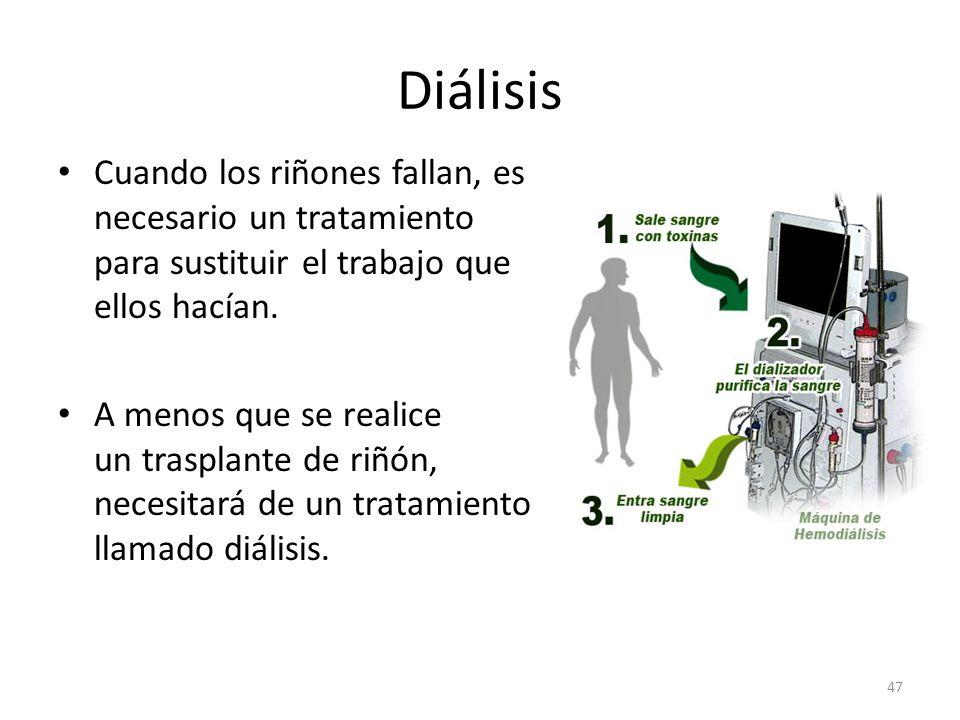 Diálisis Cuando los riñones fallan, es necesario un tratamiento para sustituir el trabajo que ellos hacían.