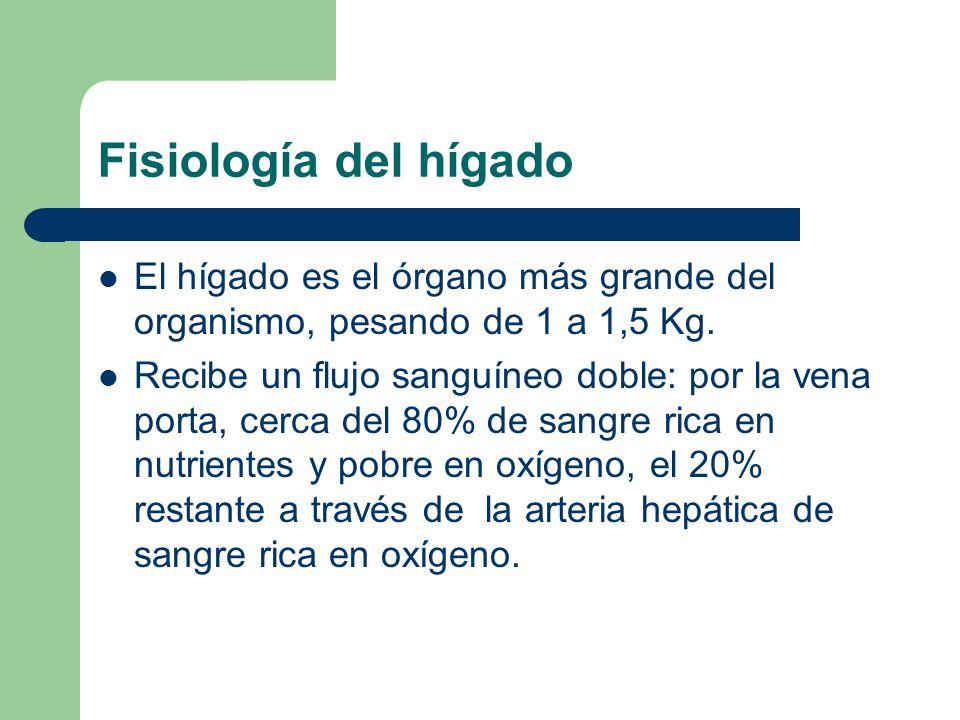 Fisiología del hígado El hígado es el órgano más grande del organismo, pesando de 1 a 1,5 Kg.