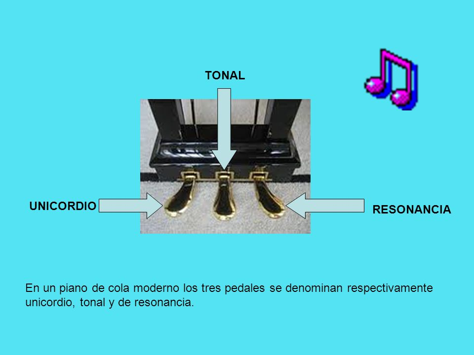 TONAL UNICORDIO RESONANCIA