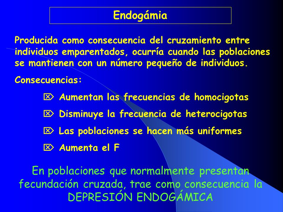 Endogámia