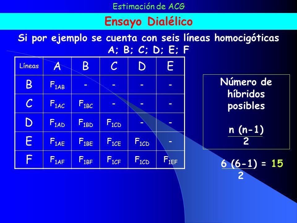 Si por ejemplo se cuenta con seis líneas homocigóticas
