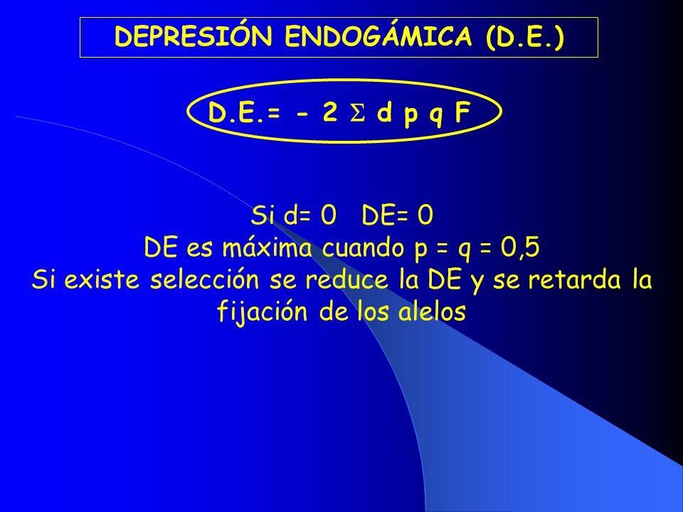 DEPRESIÓN ENDOGÁMICA (D.E.)