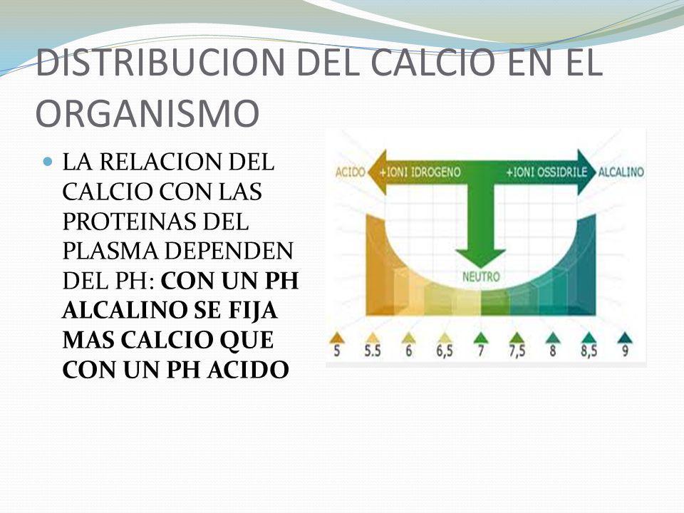 DISTRIBUCION DEL CALCIO EN EL ORGANISMO