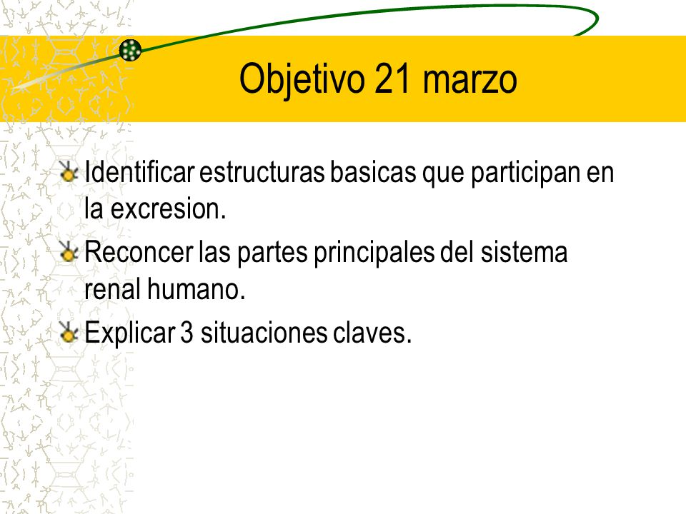 Objetivo 21 marzo Identificar estructuras basicas que participan en la excresion. Reconcer las partes principales del sistema renal humano.