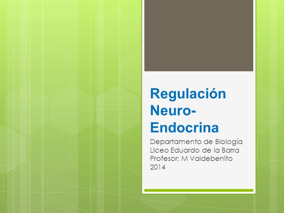 Regulación Neuro-Endocrina