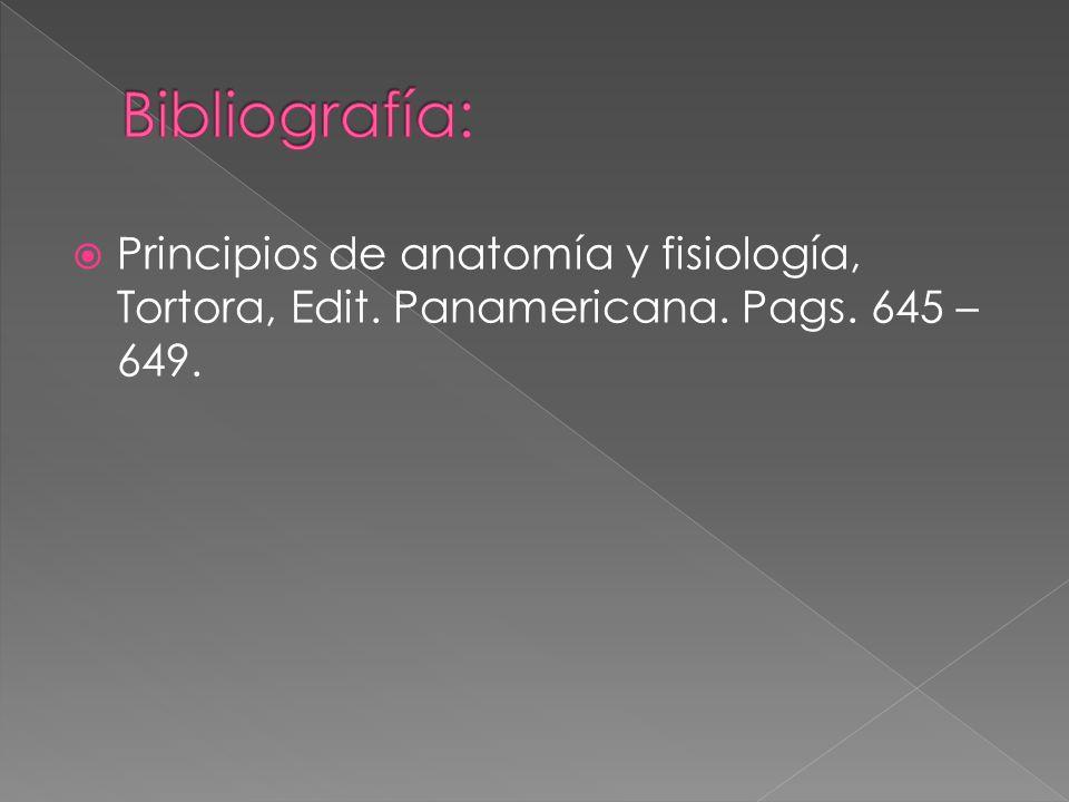 Bibliografía: Principios de anatomía y fisiología, Tortora, Edit. Panamericana. Pags. 645 – 649.