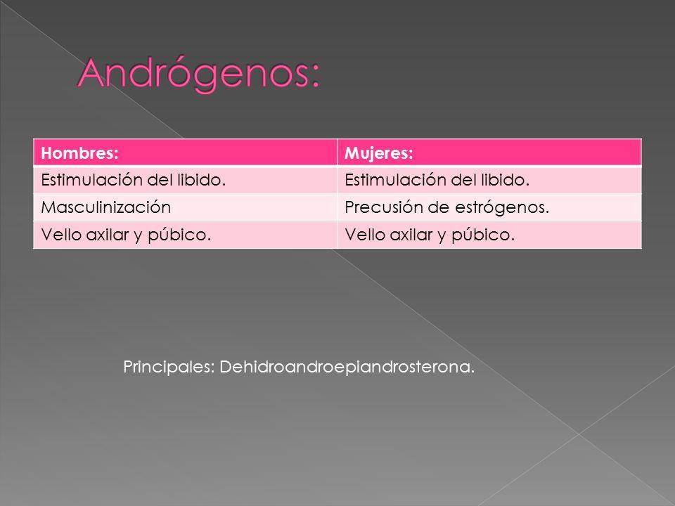 Andrógenos: Hombres: Mujeres: Estimulación del libido. Masculinización